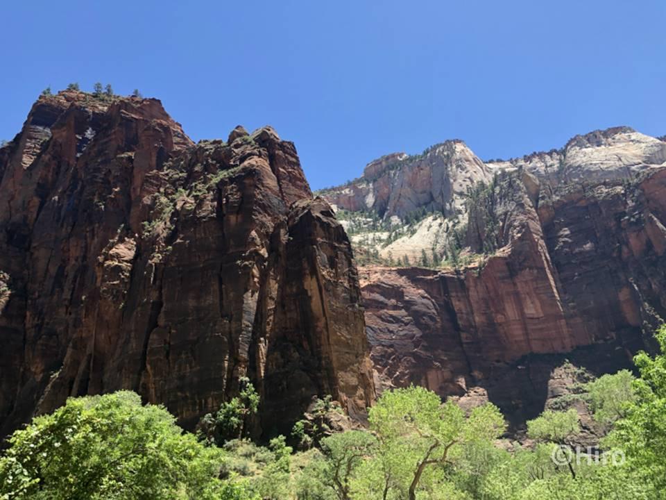 ザイオン国立公園は、岩山が目の前にそびえ立っていて「近くから見上げる」という視覚