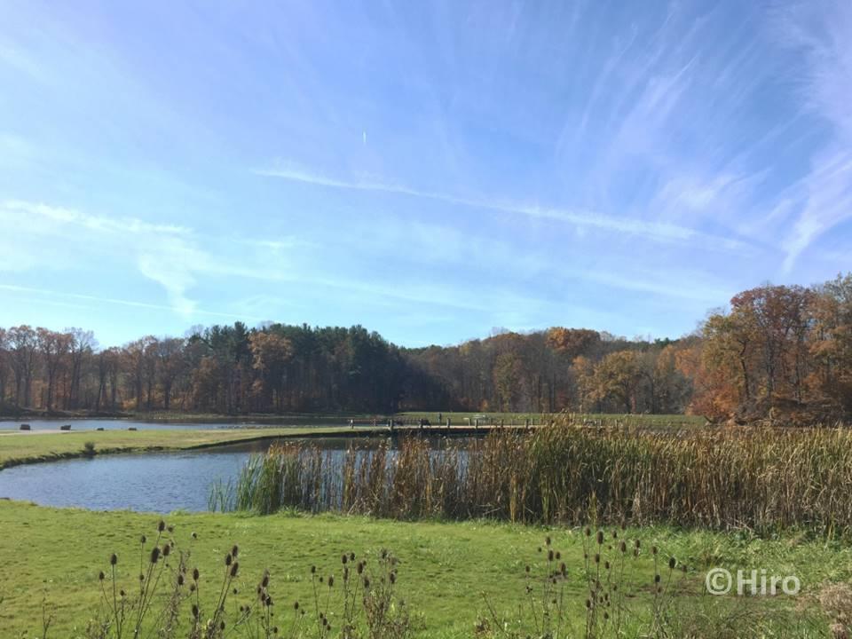 クヤホガバレー国立公園(Cuyahoga Valley National Park)