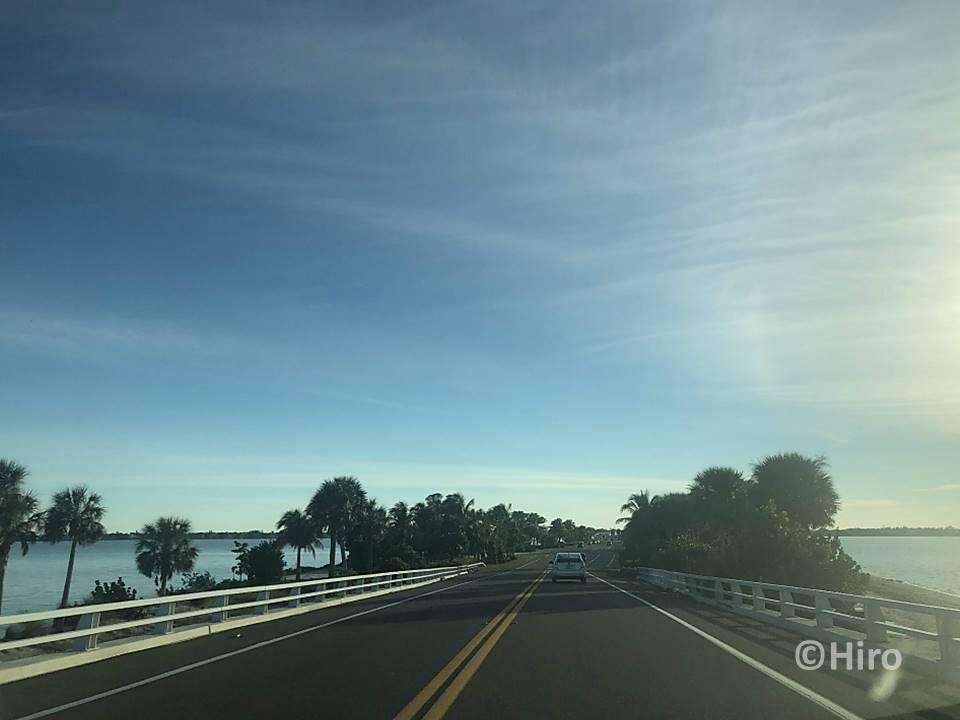【サニベル島とディズニー!】フロリダ州のロードトリップ旅行記①