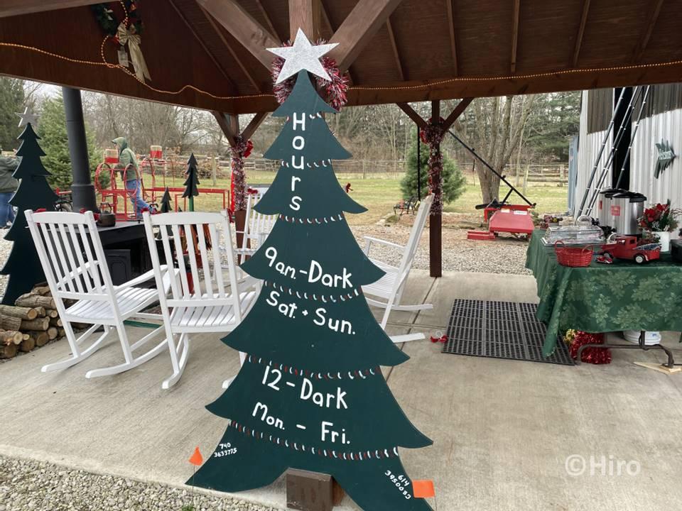 生木のクリスマスツリーをカットできるお店