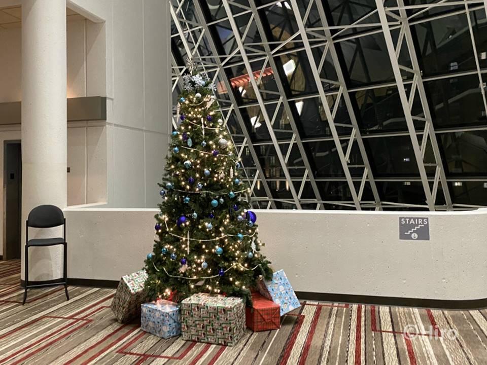 クリスマスツリーはいつどこで買う?値段はどれくらい?・まとめ