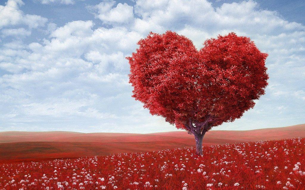 【先生にも贈る!】アメリカのバレンタインの日本との大きな違い